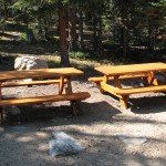 FieldStation-Dorm-PicnicTables